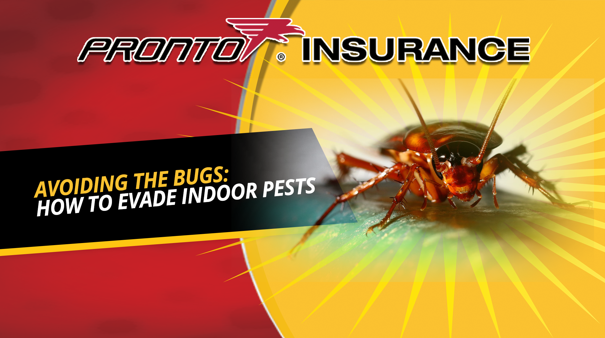 AVOIDING THE BUGS: HOW TO EVADE INDOOR PESTS